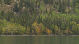 HD2008-10-1-24 lake boat ride autumn colors Stock Video Footage