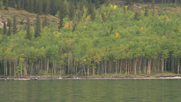 HD2008-10-1-26 lake boat ride autumn colors Footage
