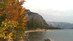 HD2008-10-1-63 lakeshore autumn colors Footage