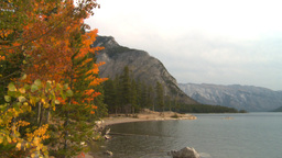 HD2008-10-1-63 lakeshore autumn colors Stock Video Footage