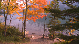 HD2008-10-1-67 lakeshore autumn colors Stock Video Footage