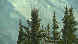 HD2008-10-2-23 top, mtn ridge and trees Footage