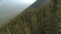 HD2008-10-2-37 ride above forest cable car Stock Video Footage