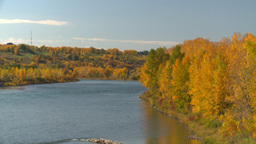 HD2008-10-2-47 Bow River autumn trees Stock Video Footage