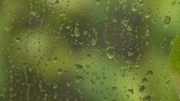HD2008-10-4-1 rain on window Footage
