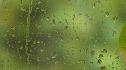 HD2008-10-4-1 rain on window Stock Video Footage