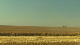 HD2008-9-2-7 combine harvest wheat field Stock Video Footage