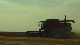 HD2008-9-2-9 combine harvest wheat field Stock Video Footage