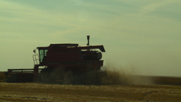 HD2008-9-2-9 combine harvest wheat field Stock Video Footage