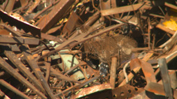 HD2008-9-3-42 metal recycler Stock Video Footage
