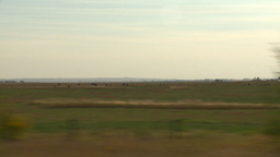 HD2008-9-3-50 drive wheat fields Stock Video Footage