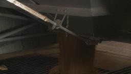 HD2008-9-3-56 grain truck unloading Footage