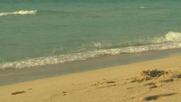 HD2009-4-6-42 Cuba beach sunset Footage