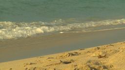 HD2009-4-6-50 Cuba beach sunset Stock Video Footage