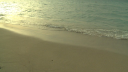 HD2009-4-6-56 Cuba beach sunset woman on beach Stock Video Footage