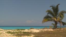 HD2009-4-7-22 Cuba beach Stock Video Footage