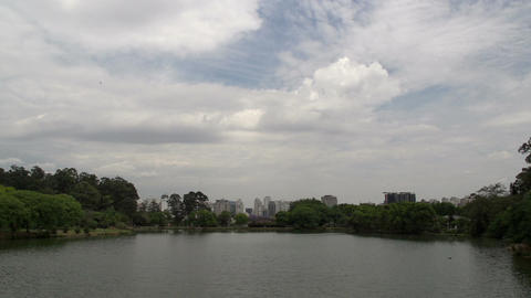 016 Sao Paulo , Ibirapuera park , pond , skyline Stock Video Footage
