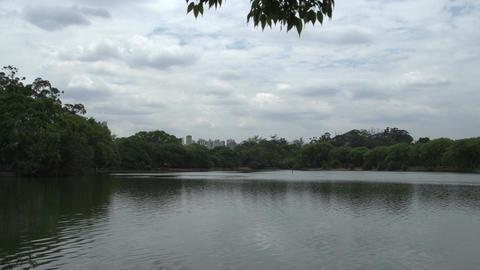 026 Sao Paulo , Ibirapuera park , pond , skyline Footage