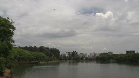 027 Sao Paulo , Ibirapuera park , pond , skyline , Footage