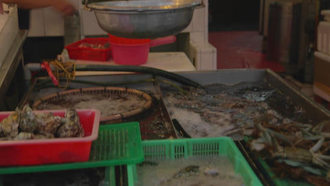 Cijin Island - fresh seafood under the scale Footage