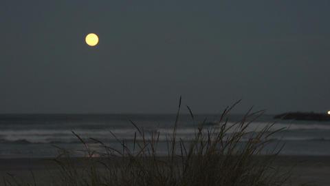 006 Laguna , sunset at sea , full moon Stock Video Footage