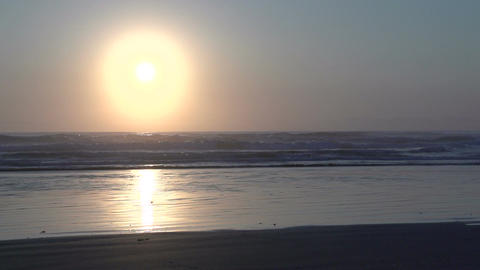 037 Laguna , Woman running at the beach , sunrise Stock Video Footage