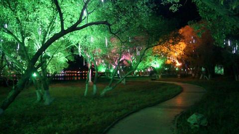 Heihe City Heilongjiang Park Night View 01 Footage
