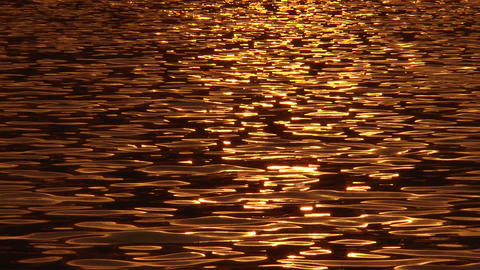 golden tiny water ripples Stock Video Footage