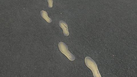 jose rizal foot prints Stock Video Footage