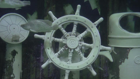 ships helm underwater Stock Video Footage