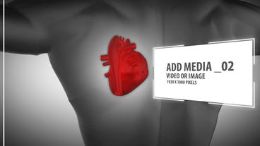 Heart and body Project After Effects Template