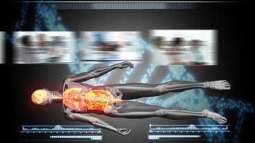 Human Body Scan After Effects Template