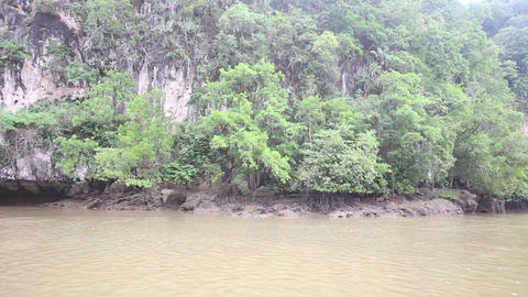 boat floats on the river of mangroves Footage