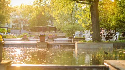 hamburg city park - Planten un Bloom - DSLR time l Footage