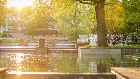 hamburg city park - Planten un Bloom - DSLR time l Stock Video Footage