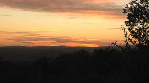 Sunset at bushcamp, South Africa Stock Video Footage