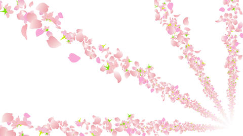 cherry blossom tunnel BG 4 4k Animation
