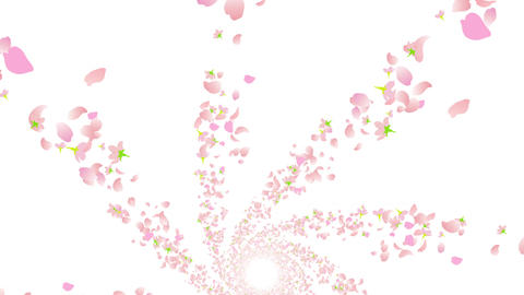 cherry blossom tunnel DG 2 4k Animation