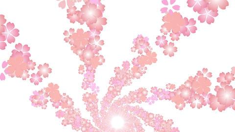 cherry blossom tunnel DG 1 4k Stock Video Footage