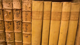 Old Books In Library Panoramic View Footage