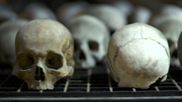Panoramic Close Up Skulls stock footage