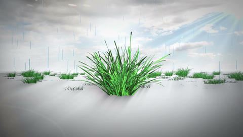 Rain Drop Growth After Effects Template
