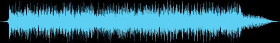 Investigative Report Music