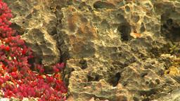 HD2009-4-8-23 lava rock Stock Video Footage
