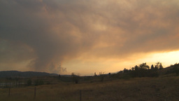 HD2009-8-1-15 forest fire smoke Stock Video Footage