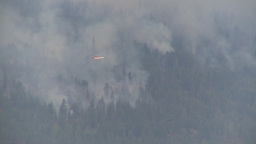 HD2009-8-1-21 Terr mtn forest fire helo drops water LL Stock Video Footage