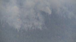 HD2009-8-1-21 Terr mtn forest fire helo drops water LL Stock Video Footage