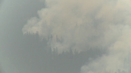 HD2009-8-1b-12 forest fire from across lake Stock Video Footage