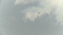 HD2009-8-1b-14 forest fire Erickson S64 helicopter drop red retardant Footage