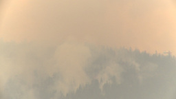 HD2009-8-1b-18 forest fire huey helicopter drop water Stock Video Footage